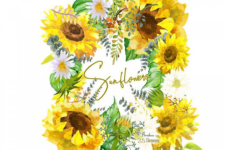Sunflower Watercolor Clipart Elements - Eucalyptus, Daisies