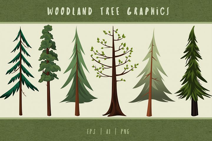 Woodland Trees Illustrated Graphics