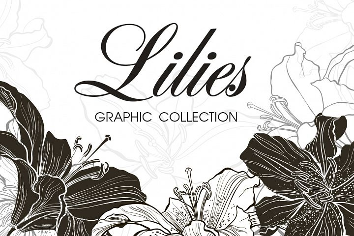 Lilies. Graphic collection.