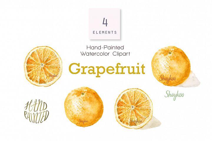 Grapefruit Watercolor Clipart, Whole And Half Grapefruit