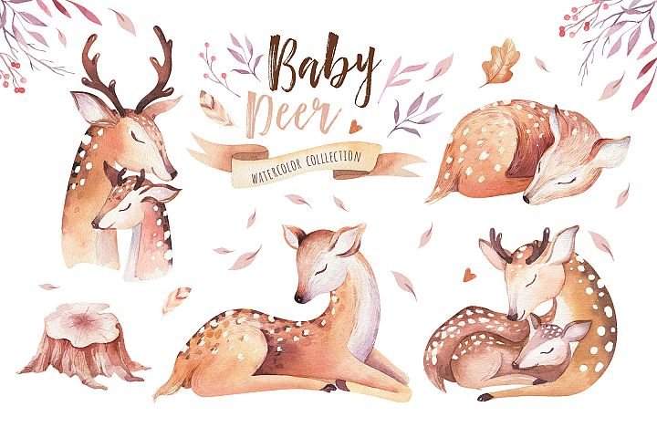 Cute baby deer collection