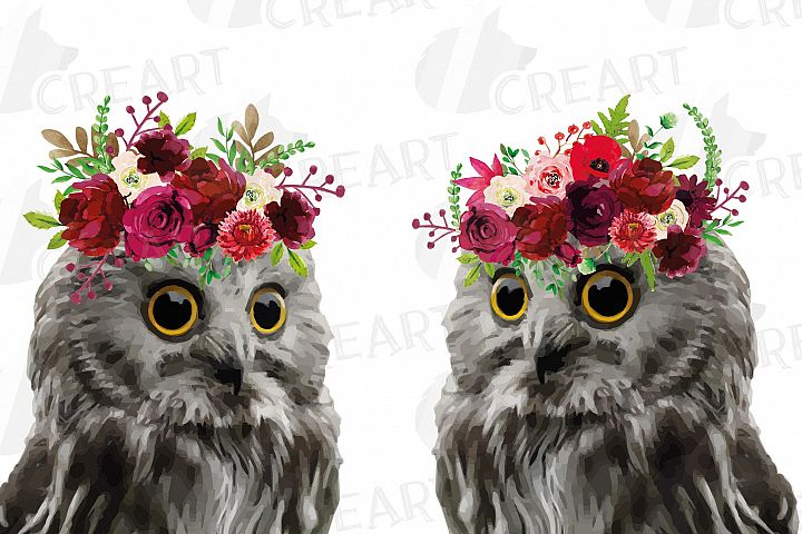 Watercolor baby owl with floral crown baby shower clip art