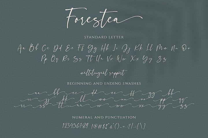 Forestea - Classy Script example image 13