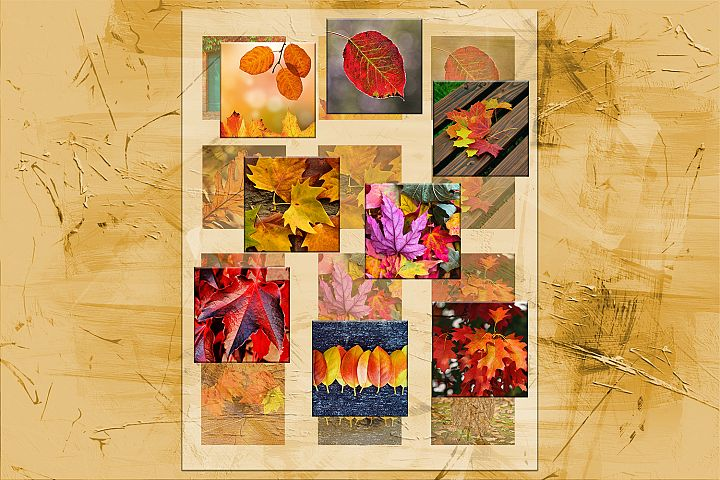 Fall Leaves, Digital Collage Sheet,2x2,1.5x1.5,1x1inch,sheet