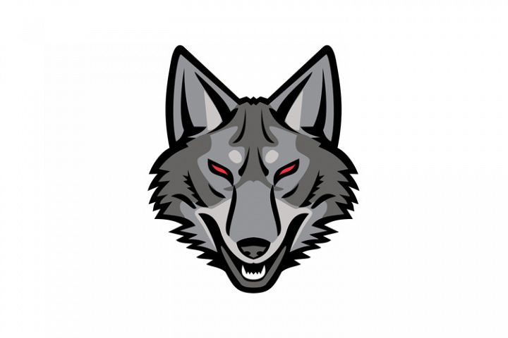 Gray Coyote Head Mascot