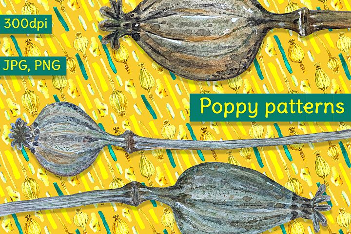 Set and 5 seamless watercolor patterns with dry poppy heads