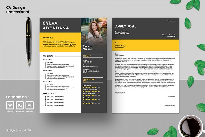 Cv Design Template Professional Vol.3