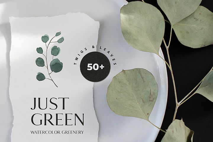 JUST GREEN watercolor foliage, leaves, greenery clipart