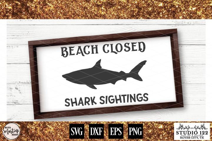 Beach Closed Shark Sightings example 1