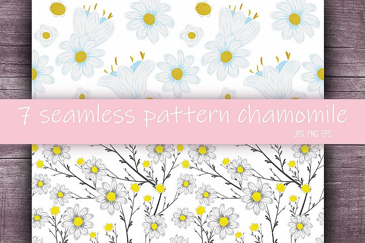 Spring flowers camomile seamless