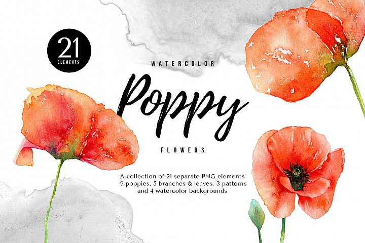 Watercolor Red Poppy Flowers