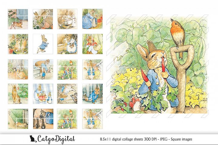 Beatrix Potter Peter Rabbit Square Digital printable images