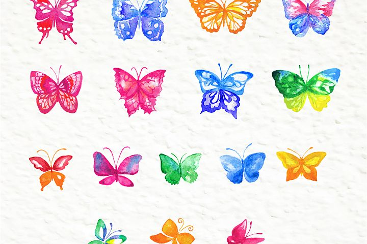 Set of watercolor design elements: rose flowers, plants, butterflies, seamless patterns, splashes.  - Free Design of The Week Design 5
