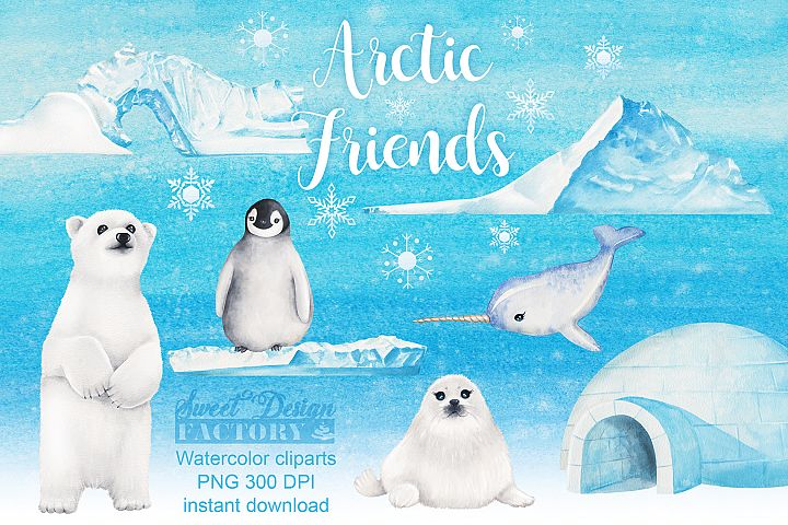 Arctic Animals watercolor Clipart