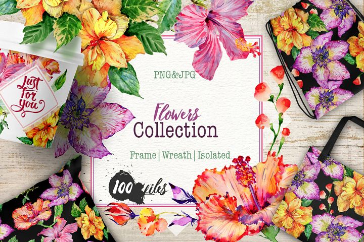 Hibiscus PNG watercolor flower set