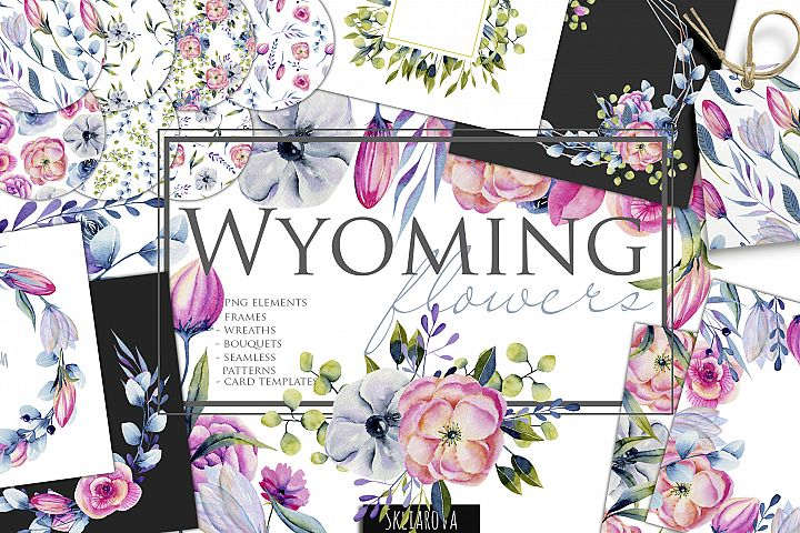 Wyoming flowers. Watercolor clipart.