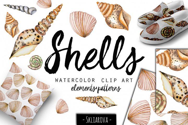 SeaShells. Watercolor clip art.