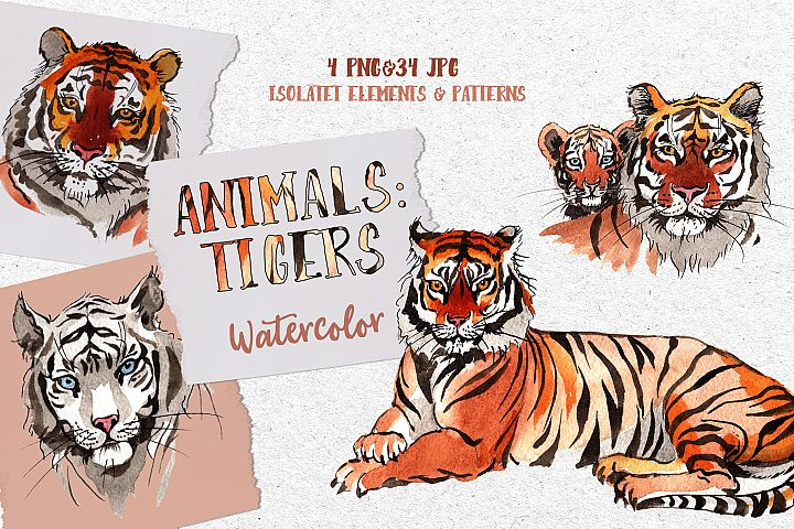Animals Tigers Watercolor png