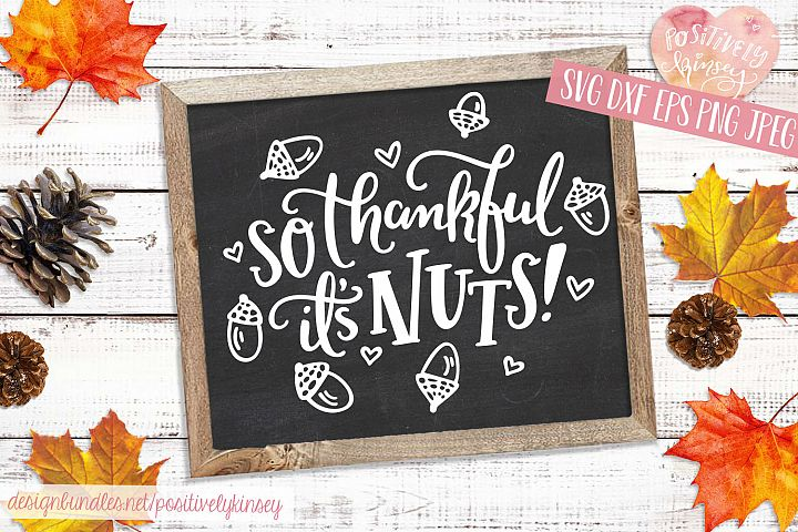 Thanksgiving SVG, So Thankful Its Nuts, Cute Squirrel SVG