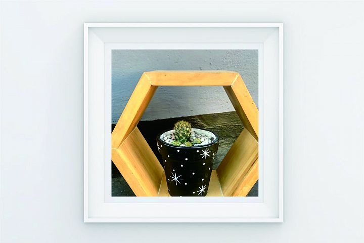 FRAME POSTER CACTUS ON RACK
