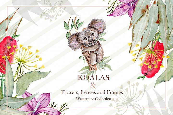 Watercolor Koala Collection