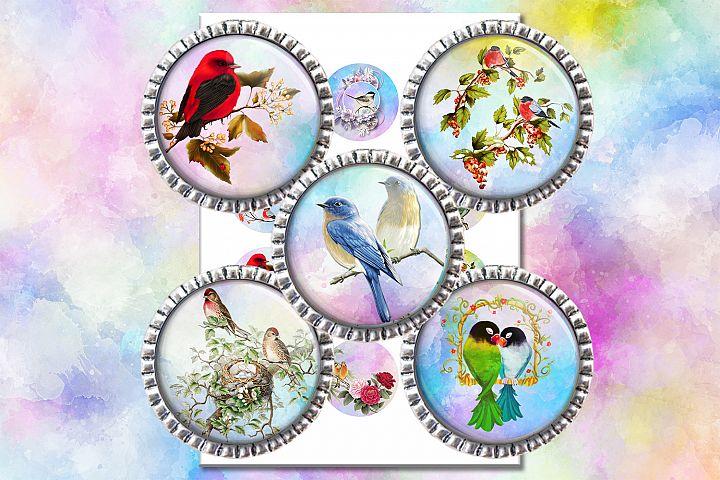 Vintage Birds,2,1.5,1.25,1,35,30,25,20,18,16,14,12mm