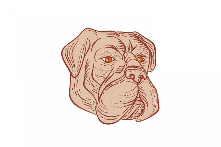 Mastiff Coloring Page | Dog coloring page, Dog coloring book ... | 480x720