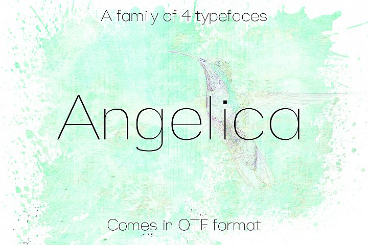 ANGELICA, A Thin Typeface