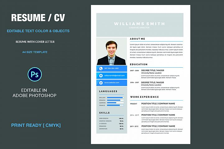 Professional  Resume example 1