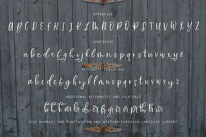 Farmhouse Country Rustic Cursive Font - Free Font of The Week Design6