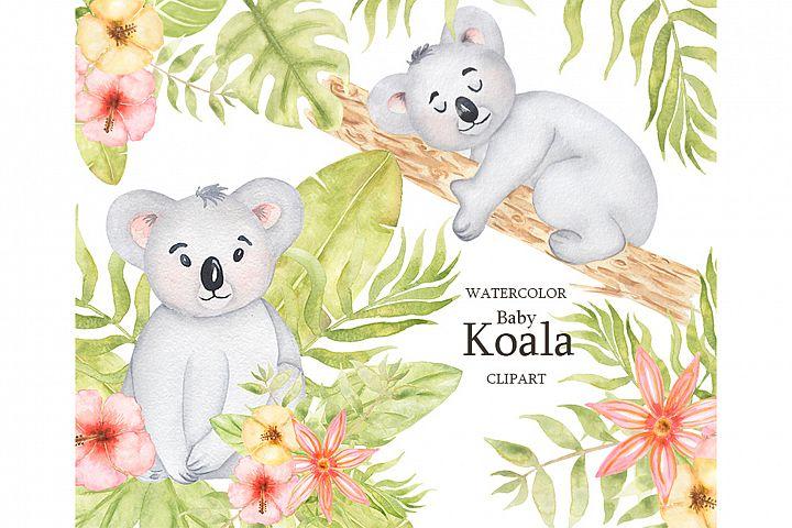 Watercolor Baby Koala