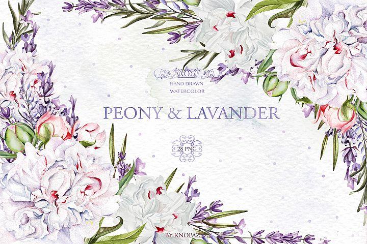 Watercolor Peony & Lavender