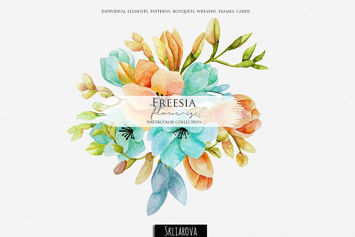 Freesia. Watercolor collection.