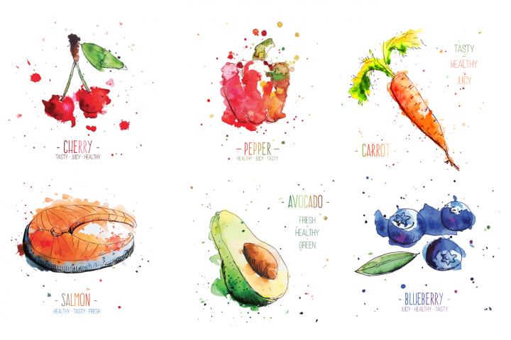 Watercolor food vegetables fruits and fish vector + bonus bird