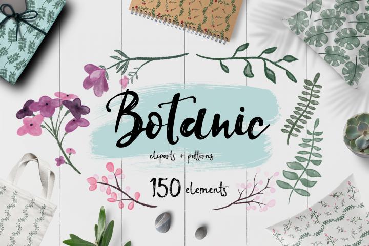 Botanic BUNDLE 150 ELEMENTS