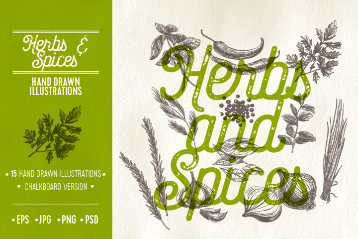 Herbs and spices illustrations