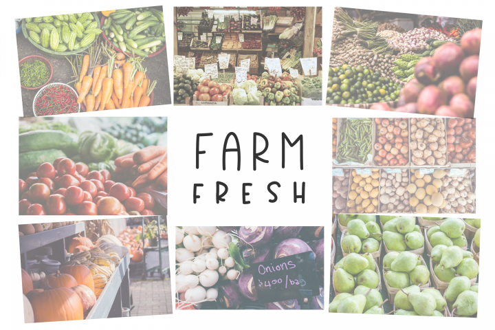 Country Market - A Handwritten Display Font - Free Font of The Week Design 5