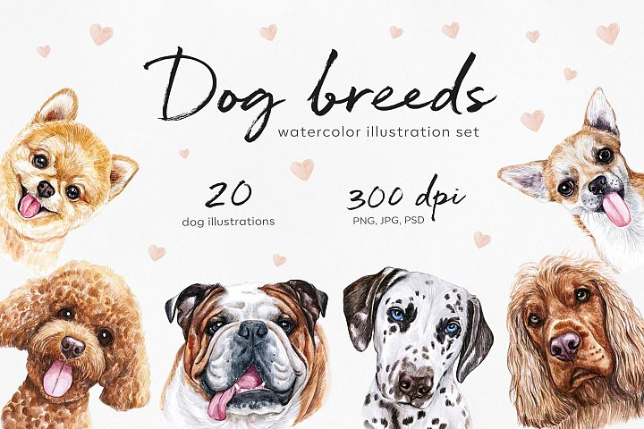 Big watercolor dog illustrations set. Cute 20 dogs breed