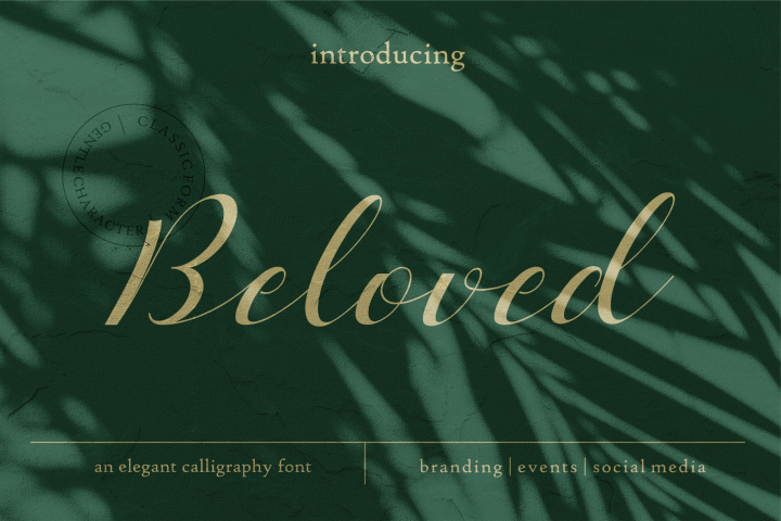 Beloved Typeface