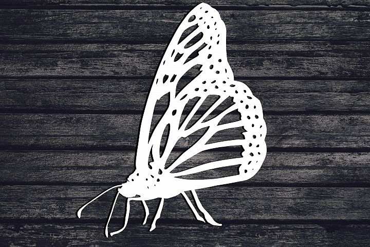Butterfly Svg, Bug Svg, Insect Svg, Animal Svg, Monarch Svg