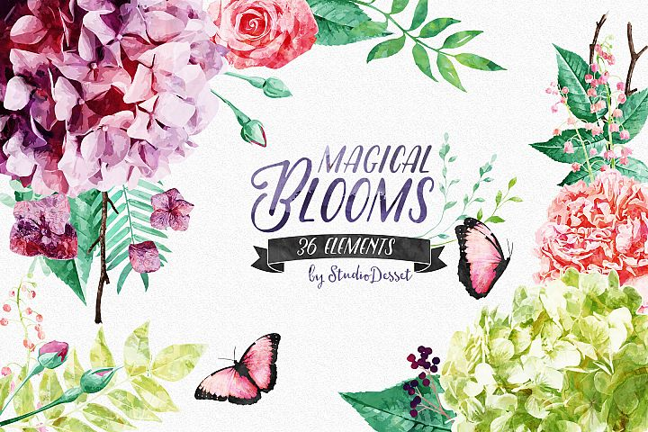 Flowers Watercolor Illustrations