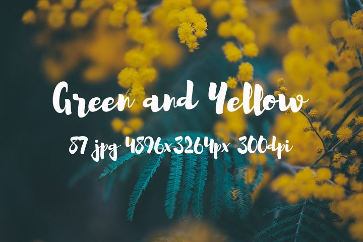 Green and yellow Pack