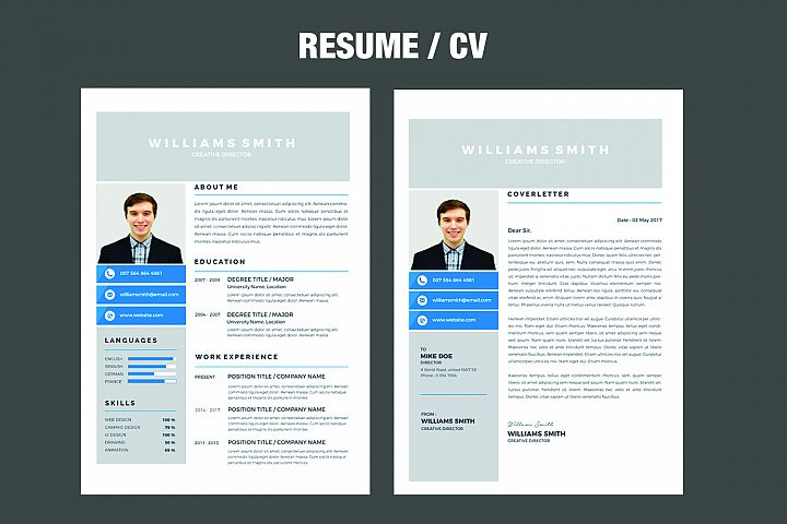 Professional  Resume example 2