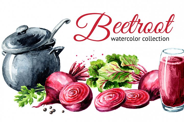 Beet root. Watercolor collection