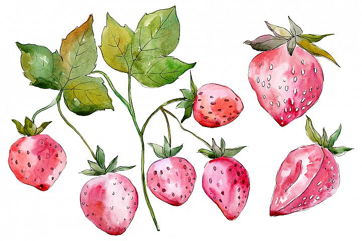 Strawberry red Watercolor png