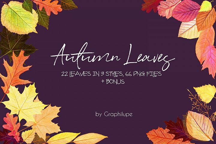 Autumn Leaves - Handcrafted Illustration Kit