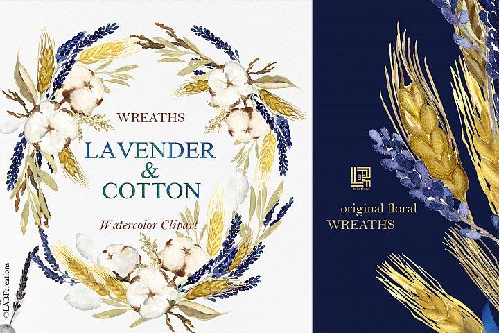 Lavender & Cotton. Rustic flowers. Watercolor clipart.