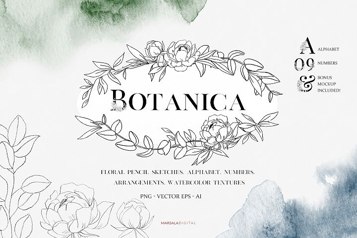 Botanical and Floral Illustrations, Alphabet, Watercolor