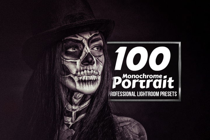 Monochrome Portrait - 100 Lightroom Presets