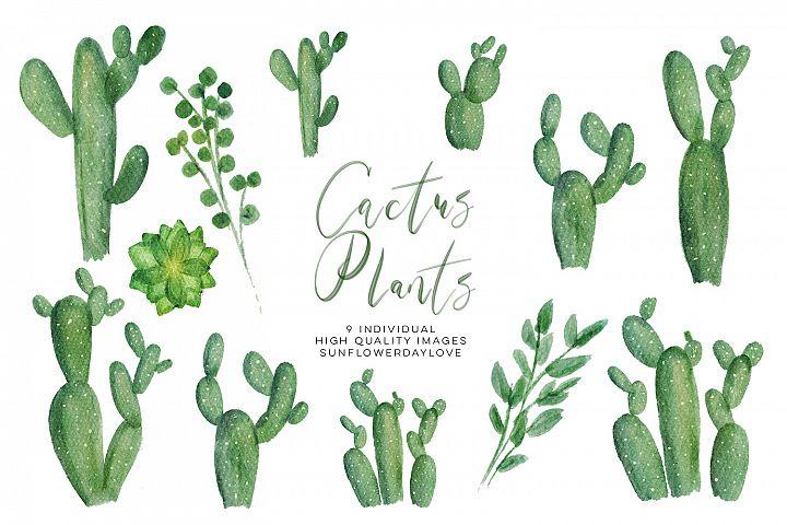 Watercolor Cactus Plant Clipart Set